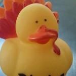 Ducktur